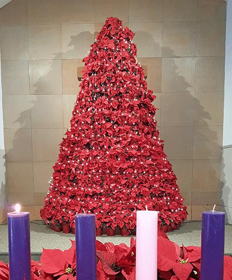 The tree is at Cornerstone Wesleyan Church, Heuvelton.