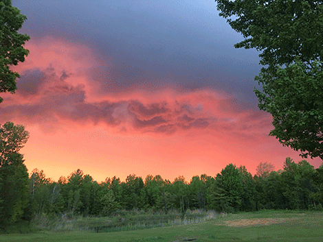 'View from my backyard, right before the storm hit,' said Brandon Wolfe & Hanna Wolfe, who submitted the photo.