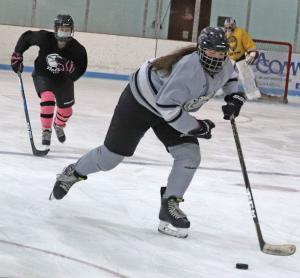 Canton hockey Feb 26 girls 1.jpg