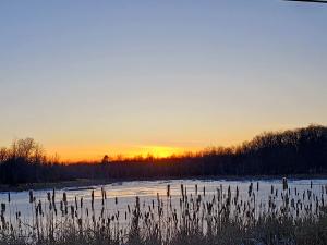 Louisville-sunset.png
