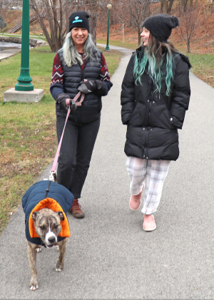 Ogd-walkers-with-dog.png