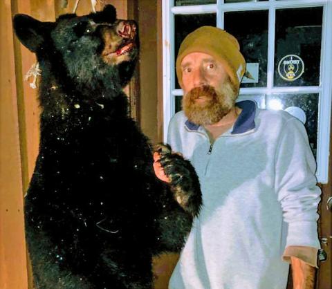 DeKalb-Bear.png