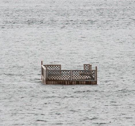 Floating-dock.png