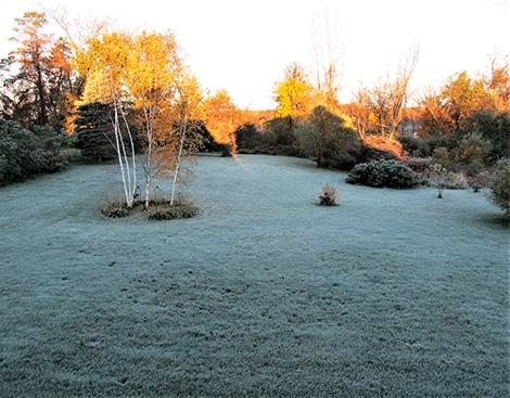 Frosty-morn-Richville.png