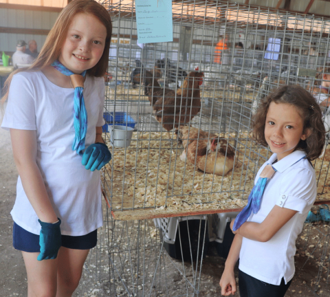 Gouverneur-two-girls-chickens.png
