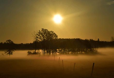 Lisbon-fog-zufall.png
