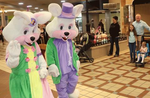 Massena-Easter-bunny-stroller.png
