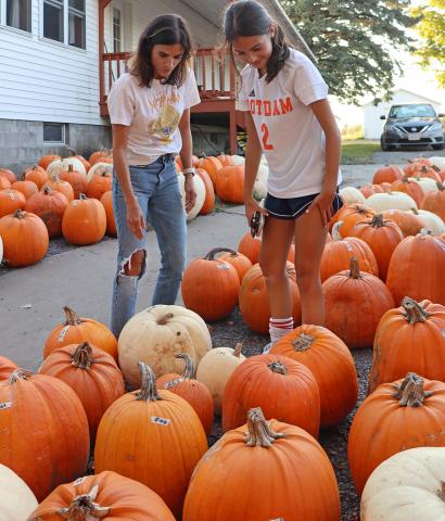 Norwood-pumpkins-for-sale-rev.png