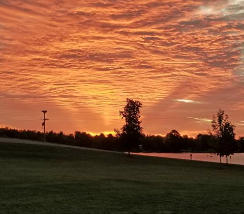 Norwood-sunrise.png