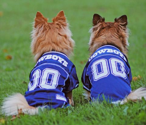 Ogdensburg-Cowboy-dogs.png
