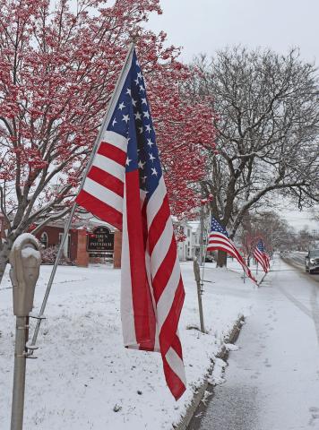 Potsdam-Veterans-Day-flag.png