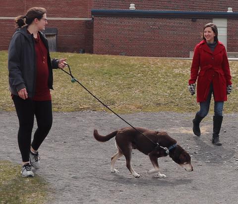Potsdam-school-2-women,-dog-Gus-3.png