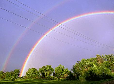 Rainbow-Gouverneur.png