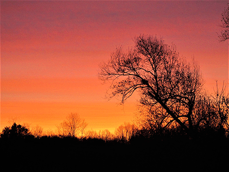 Richville-sky.png