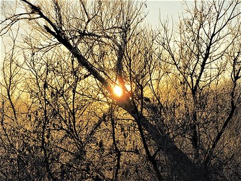 Richville-sunrise.png