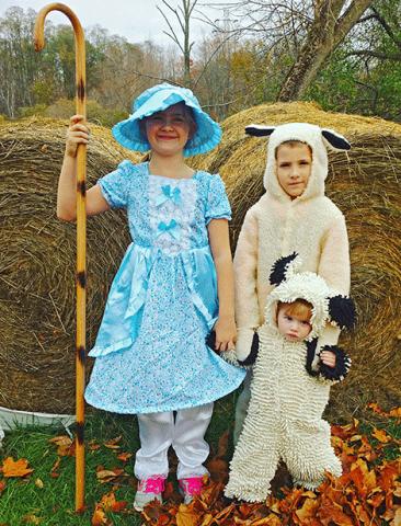 SHEEP-RICHVILLE.png