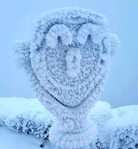 Snow-face.png