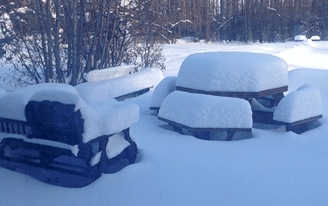 Snow-table-Canton.png