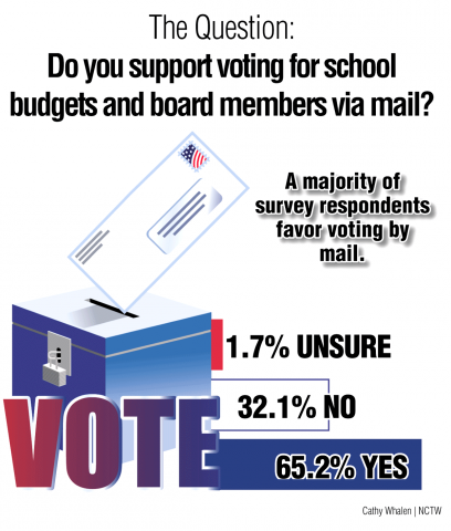 Survey-Graphic-Mail-in-Vote-M20-web.png