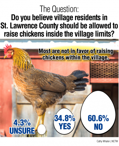 Survey-Graphic-web-Chickens-J10.png
