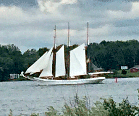 Tall-ship-Waddington.png
