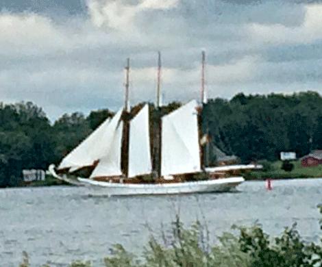 Tall-ship-Waddington.png