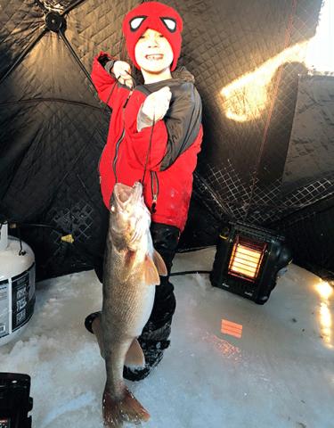 Waddington-Big-Fish.png
