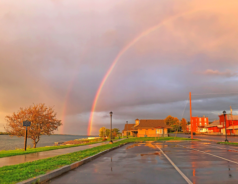Waddington-rainbow.png