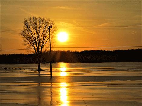 frozen-field-richville.png