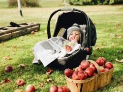 Lisbon-apple-kid.png