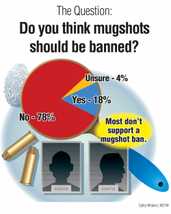 Survey-Graphic-A24-Mugshots.png