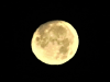 Bright-moon-Richville.png
