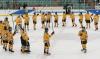 CU-hockey.png