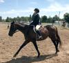 Canton-Horse-Fair.png