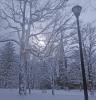 Canton-snow-park.png