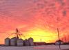 Chipman-sunrise.png