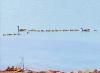 Chippewa-Bay-goslings.png