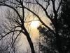 Cold-sun-Richville.png