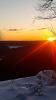 Colton-Higley-Flow-Sun.png