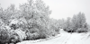 Don-Straigh-Winter-Road-Winthrop.png