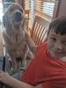 Edwards-Knox-dog-kid.png