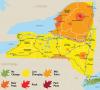 Fall-Foliage-Map-Oct3-9.png