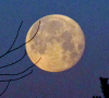 Full-moon-Richville.png