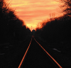 Glow-tracks-Canton.png