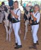 Gouverneur-Hermon-cows.png