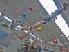 H-D-cranes.png