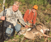 Hammond-deer.png