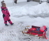 Hammond-snow-sled.png
