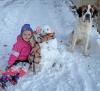 Madrid-snowman-girl-dog.png