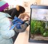 Massena-Nature-Center-aquarium-0.png
